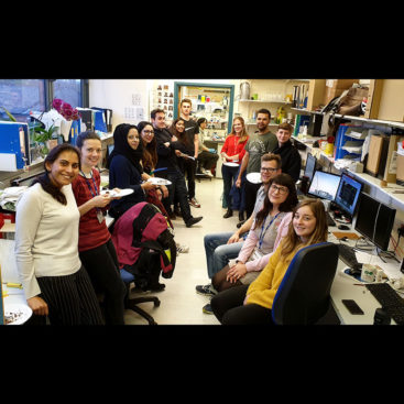 Almutasem Saleh's one year anniversary with the DNA Replication Group
