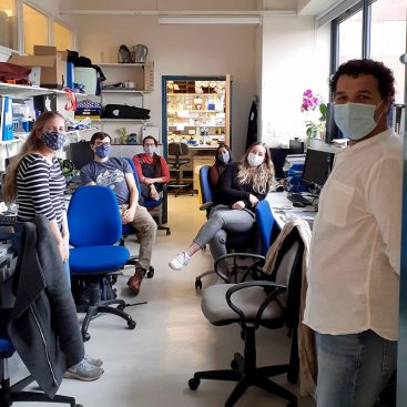 DNA Replication Group gets together in the office to celebrate Jessica Ellin's birthday